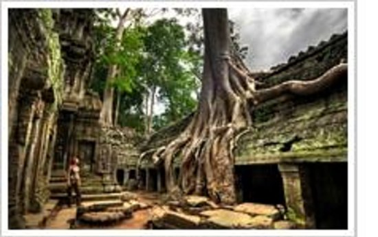 private siem reap tour guide