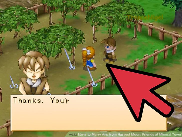 harvest moon more friends of mineral town events guide